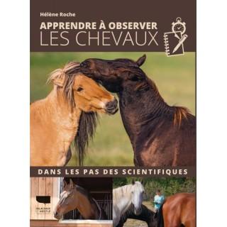 Apprendre à observer les chevaux