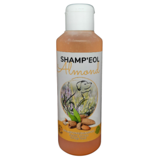Shampoing amande douce chien