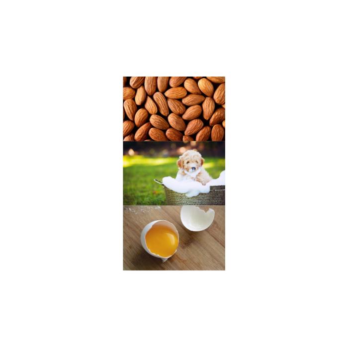 Shamp'eol Amande douce – 250 ml