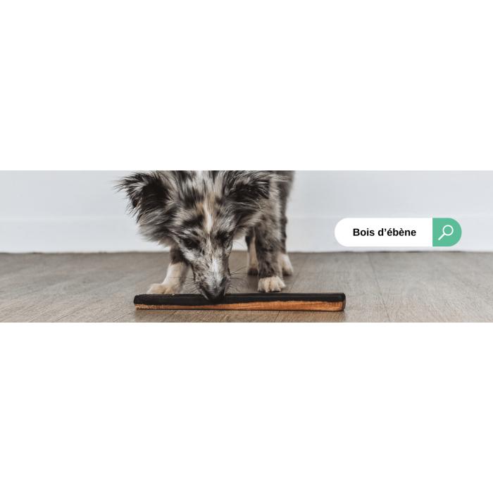 Bâton de bois d'ébène (4 tailles)