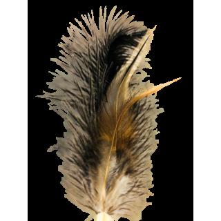 Plumeau Nala, gros plan, par AnimalinBoutique