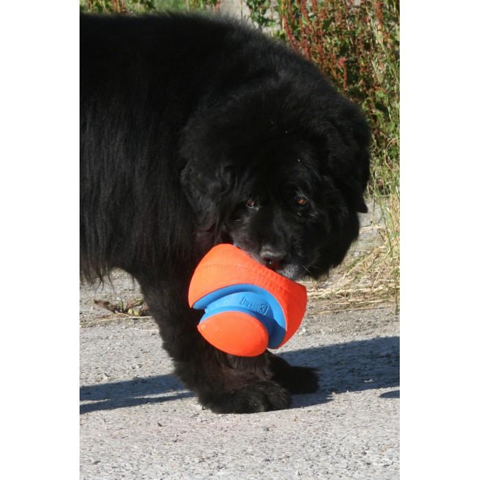 Ballon Kick Fetch - Chuckit