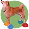 Plots FitPaws (FitPaws Paw Pods)