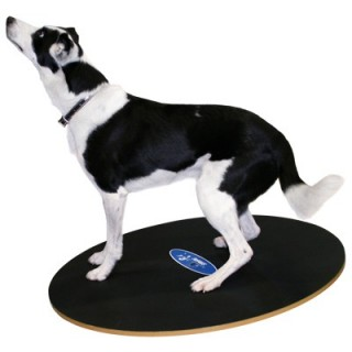 Planche d'équilibre FitPAWS® (FitPAWS® Wobble Board)
