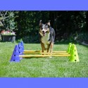 Kit Cavaletti (Dog Agility Kit)