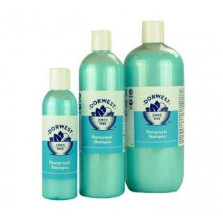 Shampooing Arôme Menthe