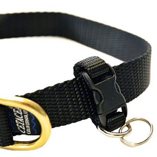 Porte-Médaille amovible (Tag-It Removable Tag Holder)