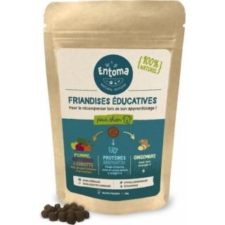 Friandises à la farine d'insectes (Education)