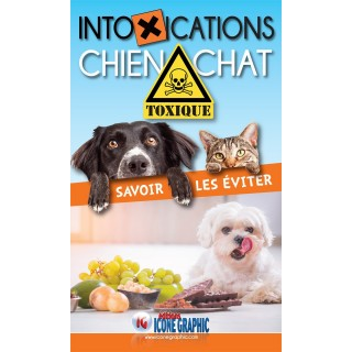 Intoxications Chien-Chat