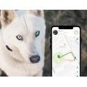 Kippy Evo (Localisateur GPS avec écran d'activités pour chiens et chats)