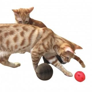 Kitty Balle ou Haltère en carton pour chats