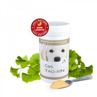 Cani TAO-XIN – Equilibre & Respiration