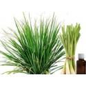 Savon 100 % naturel à l 'huile de Neem