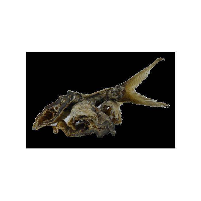 Poissons séchés de Norvège (Greenheart Premiums Stockfish)