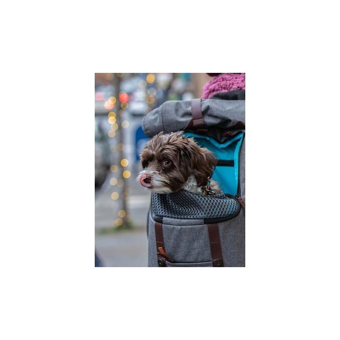 Sac à dos de transport pour animaux (K9 Rucksack)