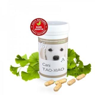 Cani TAO-XIAO – Drainage hépato-rénal