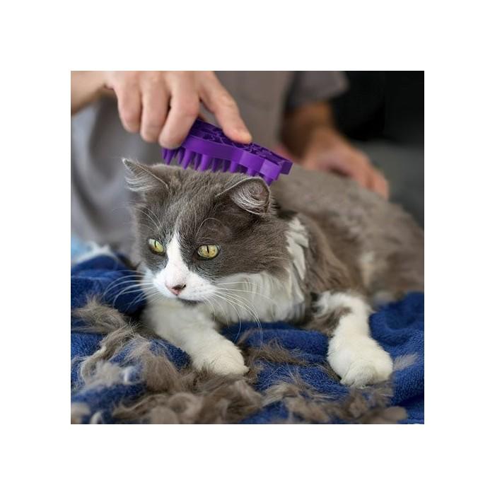 Brosse de massage Zoom Groom (pour chats)