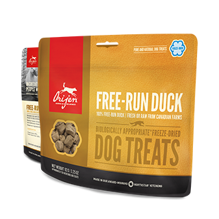 Friandises lyophilisées monoprotéiques au Canard (Orijen Free-Run Duck Dog Treats)